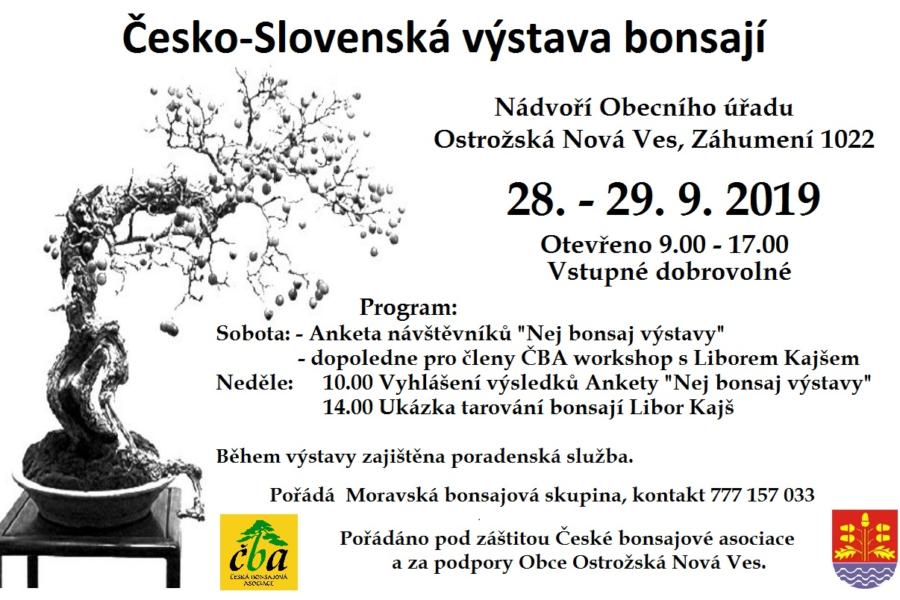Česko-slovenská výstava bonsají