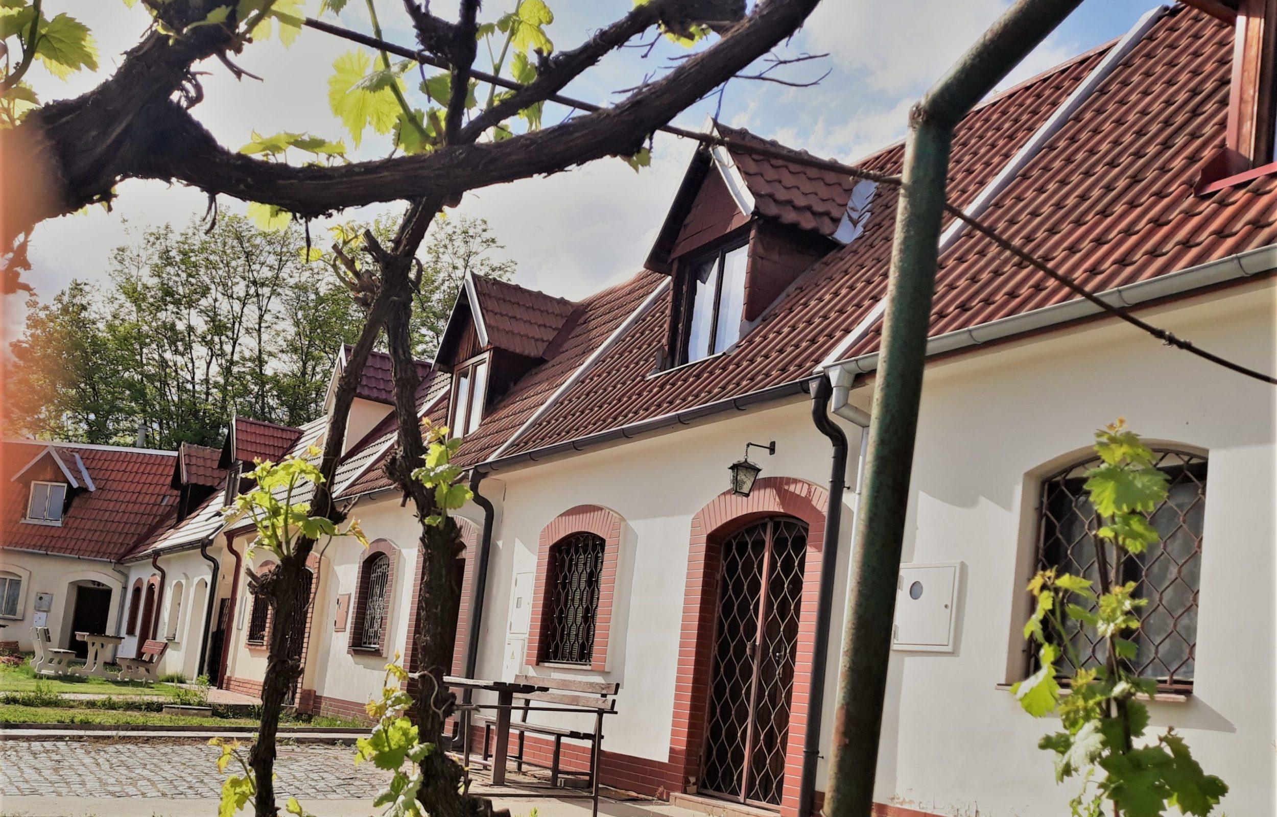 Turisty stále neobjevený vinařský areál – Cihelka ve Vracově